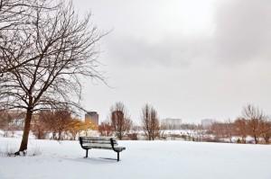 pond_winter